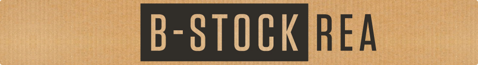 B-Stock gitarr REA
